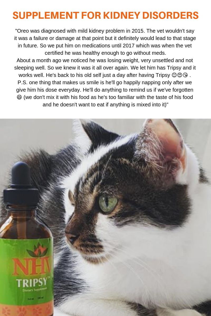 Tripsy™ for cats Cats, Pet care, Animal faces