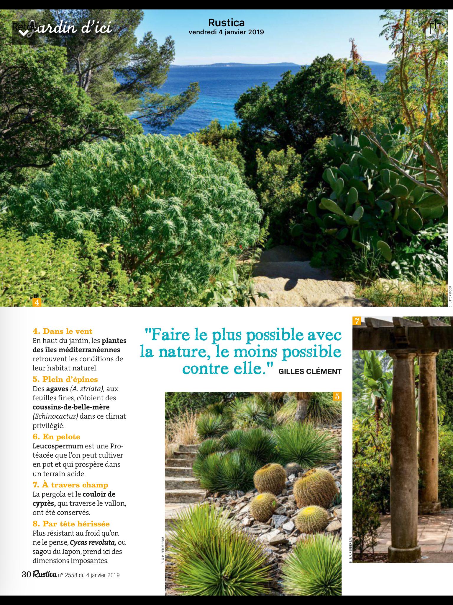 Que Faire Au Jardin En Janvier jardin méditerranéen en 2020 | jardin méditerranéen, jardins