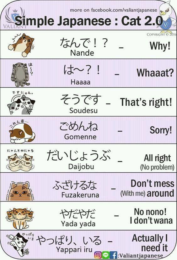 Pin by Rayne Romereo on Anime   Japanese phrases, Japanese ...