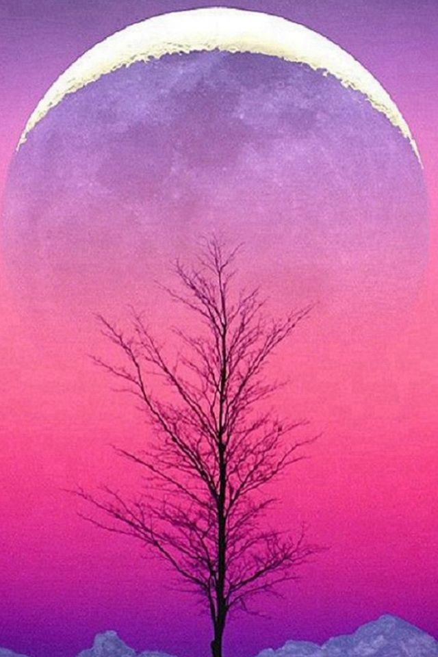 Pure Aesthetic Cold Sky View Iphone 4s Wallpapers Moon Images Beautiful Moon Beautiful Nature
