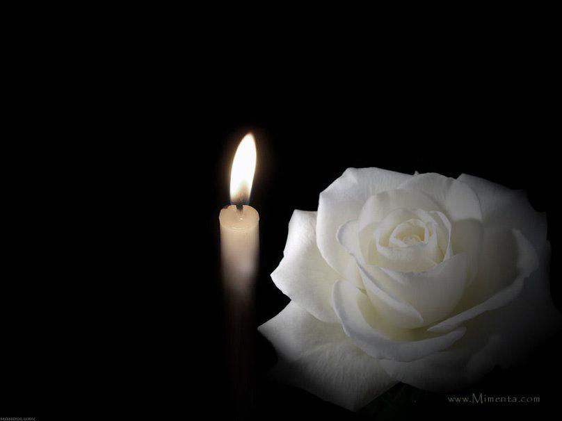 Candle With White Rose Vektor Rosas Blancas Flores De Luto Rosas Y Espinas