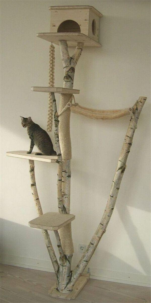 20+ Die beliebtesten Katzenbaum-Ideen, die Sie lieben werden #workathome