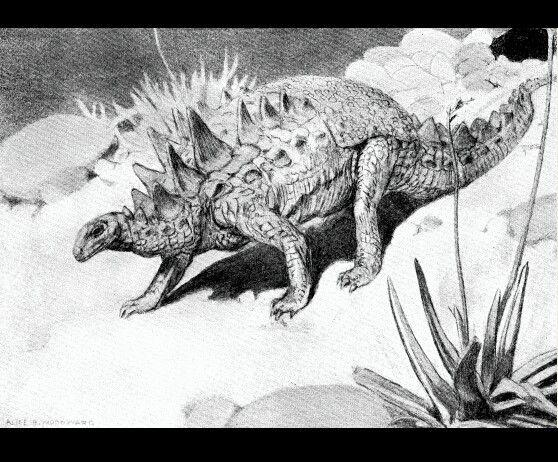 Polacanthus a.woodward