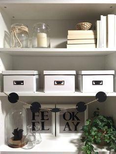 6 Tipps wie du dein Bücherregal dekorativ in Szene setzen kannst