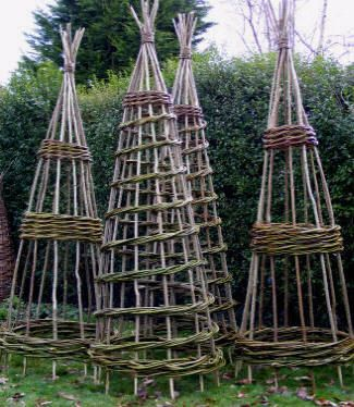 Willow Obelisks...I Would Love To Make One Of These For My Garden