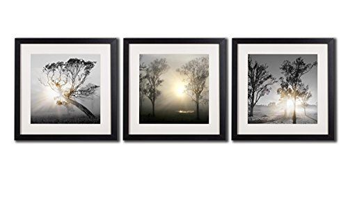 Black And White Framed Wall Art Tree - Wiring Diagrams •