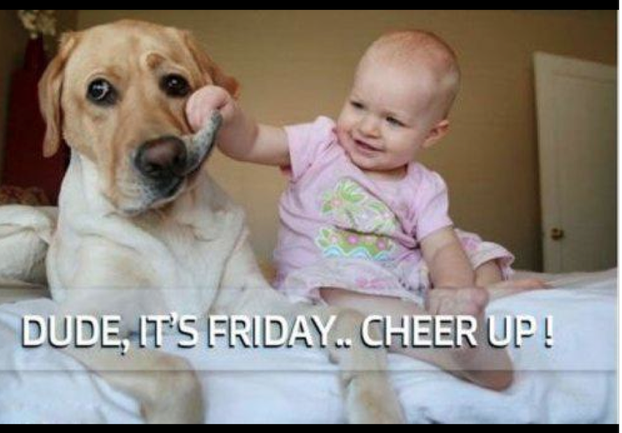 baby, dog,,=happiness