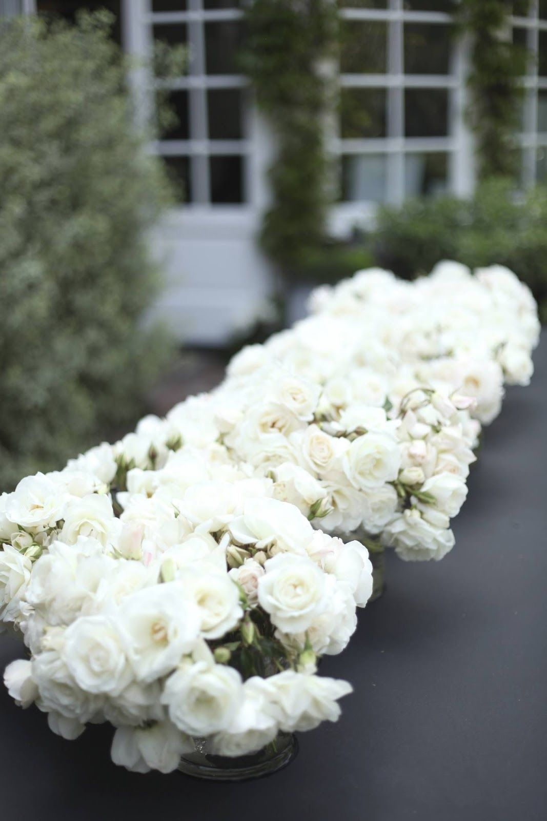 White floral arrangements-- guests will have colored flowers in ...