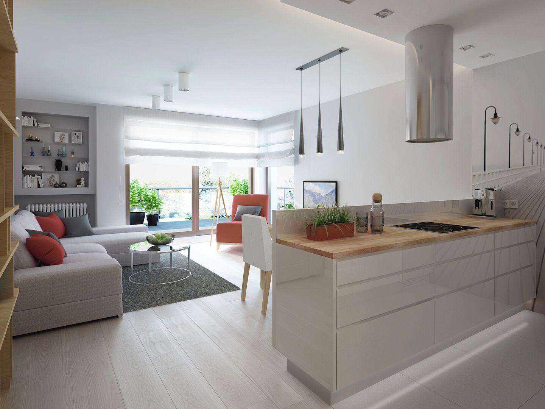 Salon Z Aneksem Kuchennym Szukaj W Google Open Kitchen