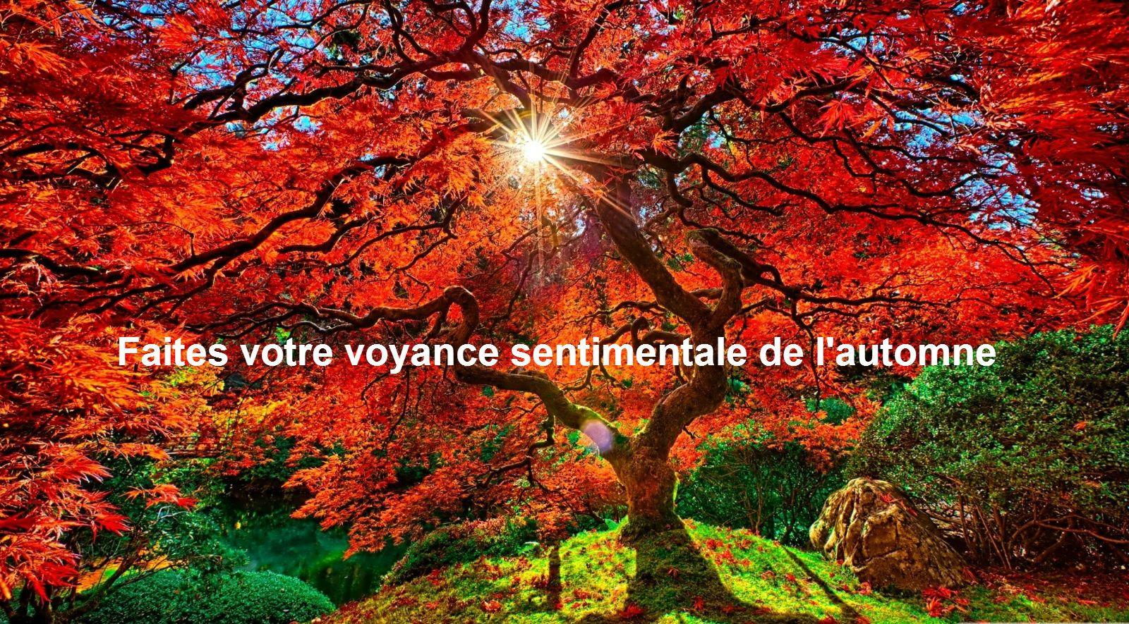 Voyance - ✨ Lutricia Voyance 08 99 37 00 68 ✨