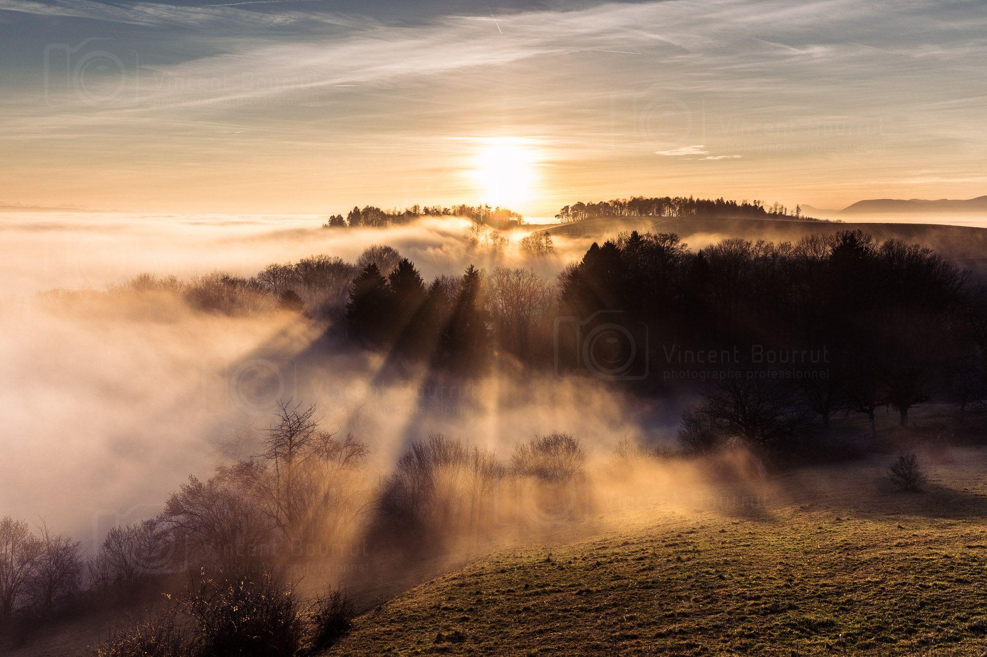Mont Vully canton de Fribourg Paysages Pinterest