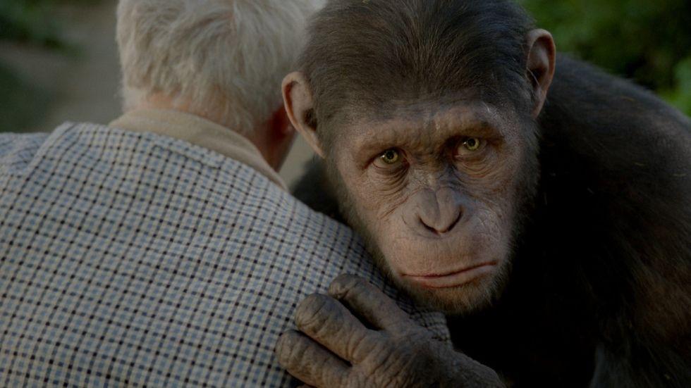 Cinema em Cena | Filmes | Planeta dos Macacos: A Origem