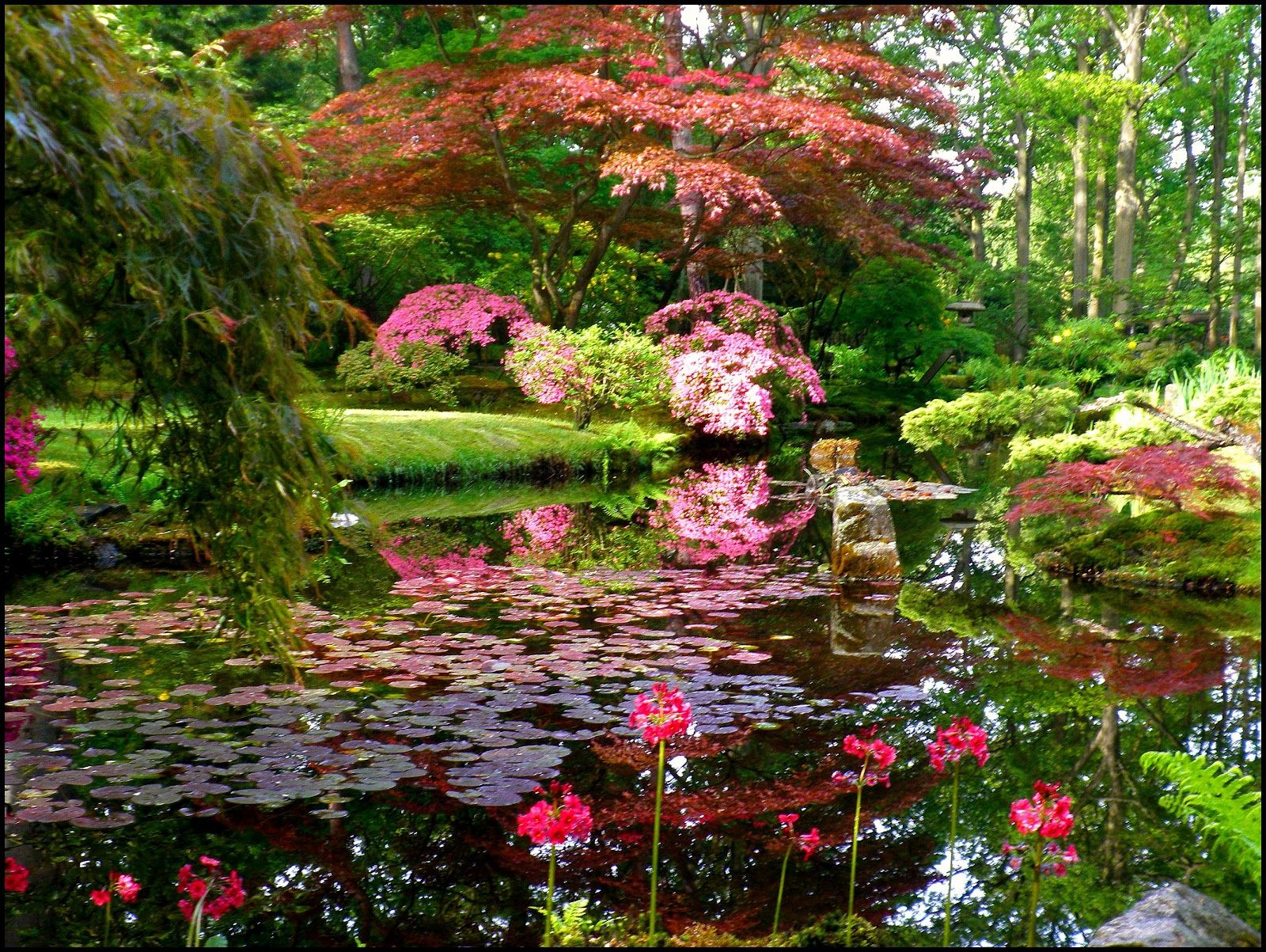Japanese garden is the supreme artistic creation from a very