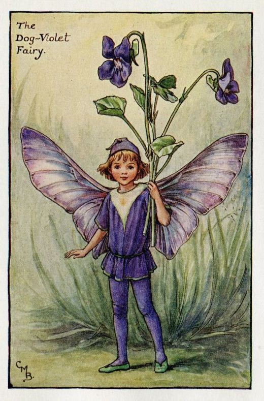 DogViolet Flower Fairy Vintage Print c1927 Cicely by TheOldMapShop
