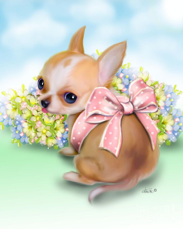 Caramel Chihuahua Baby Chihuahua Art Cute Animal Clipart Cute