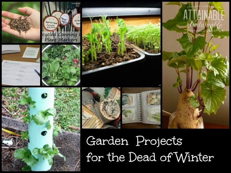 Garden ideas and projects to tackle in the dead of winter. Plan for ...