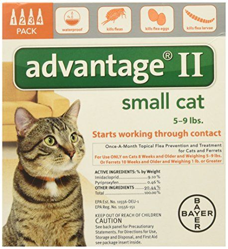 Advantage Ii For Cats 5 9 Lbs 4 Months Flea Treatment For Kittens Flea Prevention For Cats Flea Control For Cats