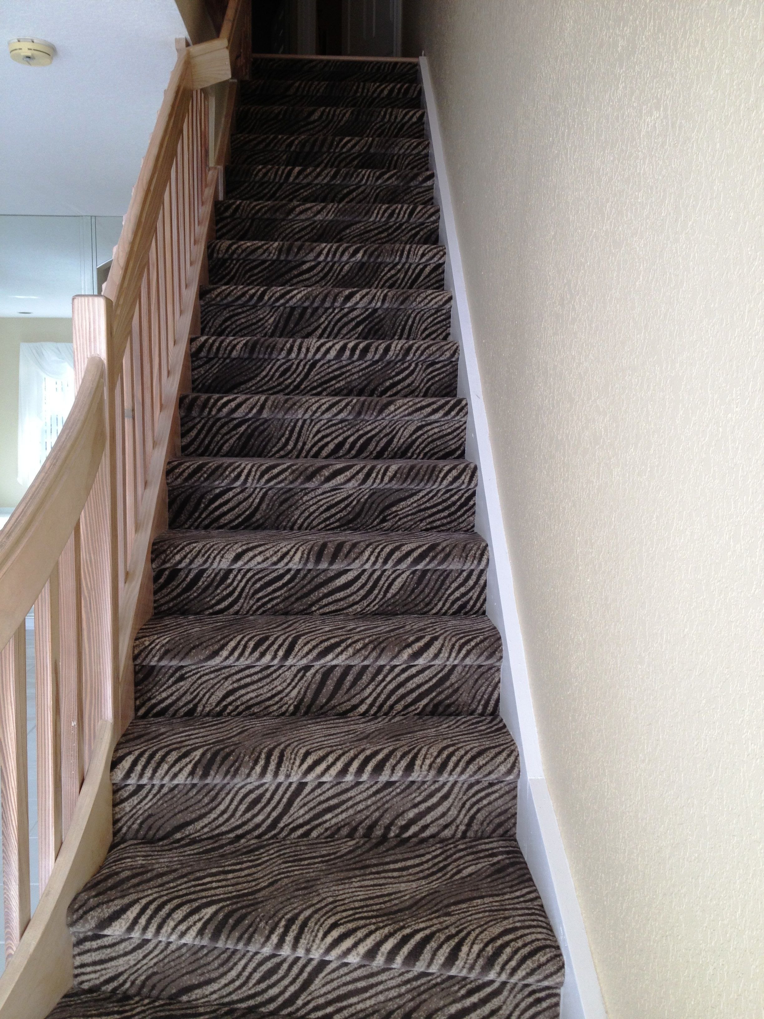 Check Out These Awesome Steps Where We Used Stanton Carpets Zaire Shilling For Sarae S