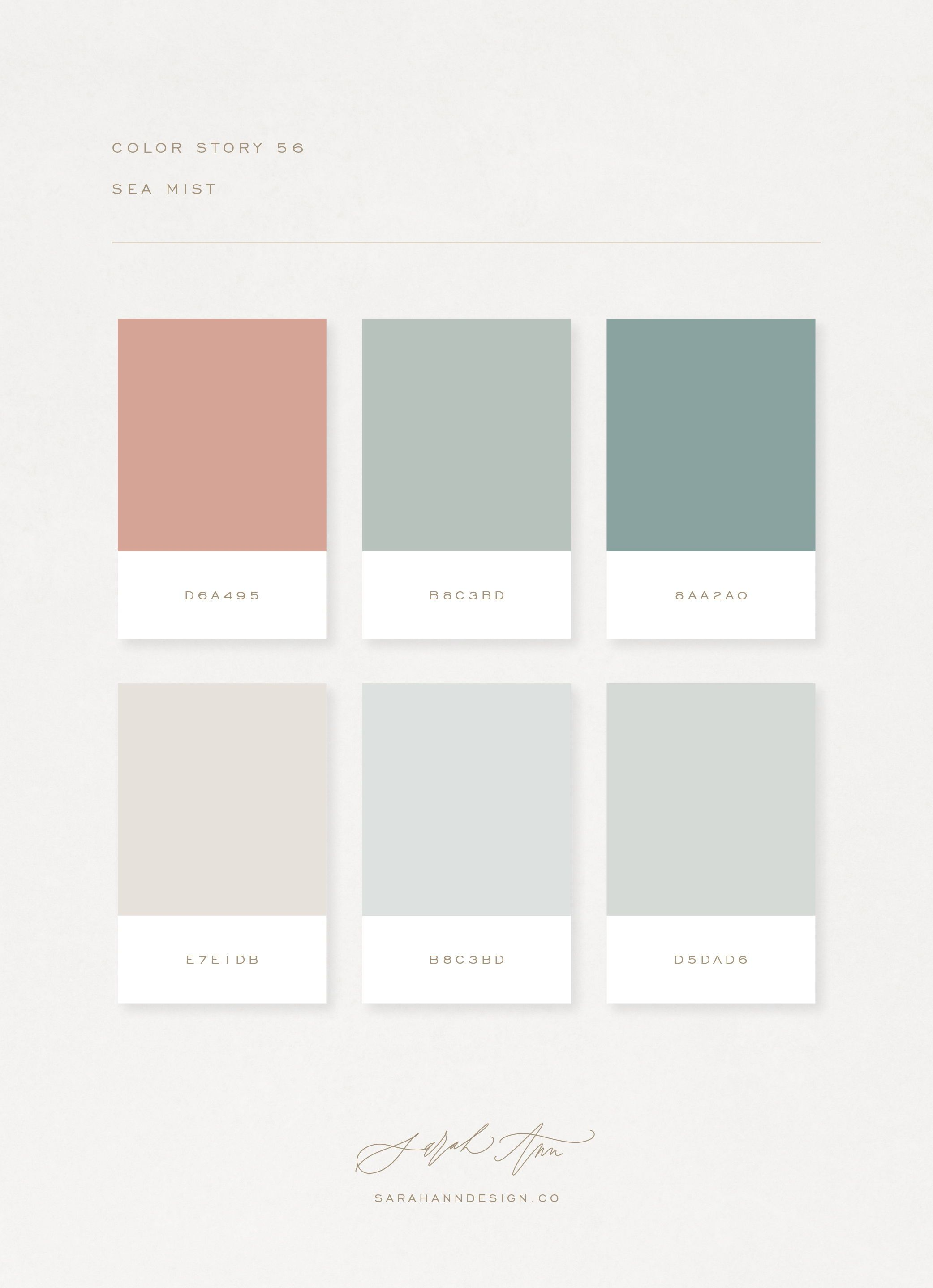 The Color Story Library: A Curated Collection of 100 Color Palettes