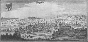 Sinsheim Merianstich 1650 Paris Skyline German Heritage Skyline