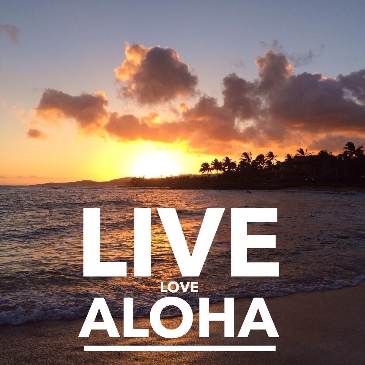 Live Love Aloha Hawaii Discount Blogs Pinterest