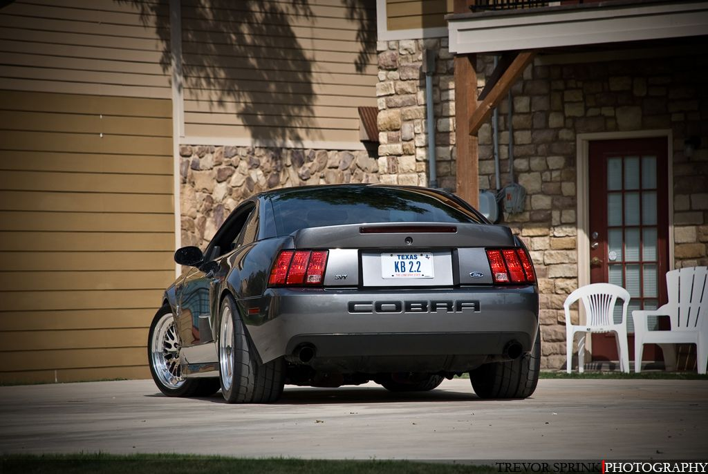 Terminator Cobra Mustang Cobra Mustang New Edge Mustang