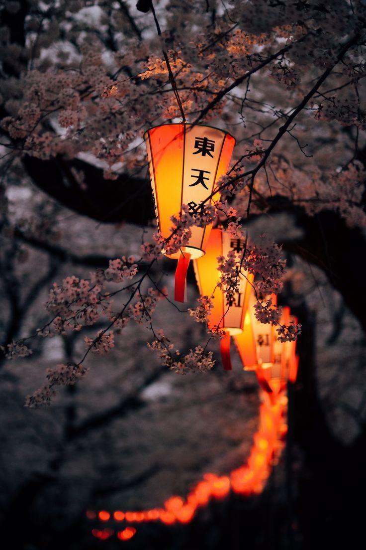 , Japan, My Travels Blog 2020, My Travels Blog 2020