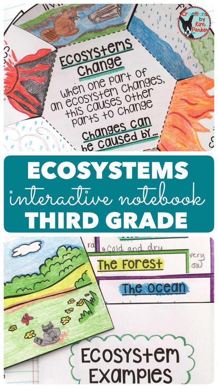 Ecosystems Science Interactive Notebook Grade 3