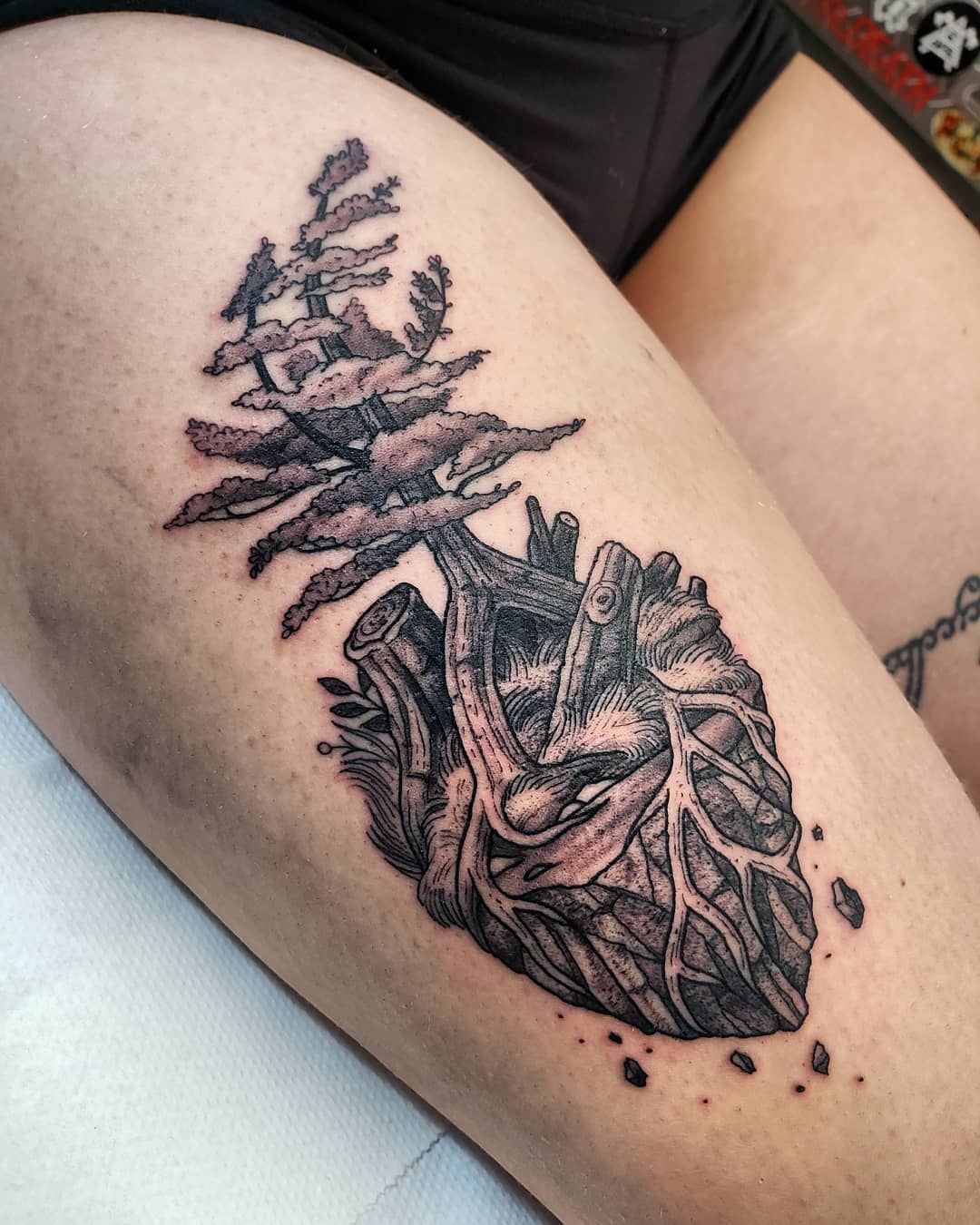 68d405cddf30b Simple and Easy Pine Tree Tattoo – Designs & Meanings (2019) tattoos,tattoos  for women,tattoos for guys,tattoos for women small,tattoos for women half  ...