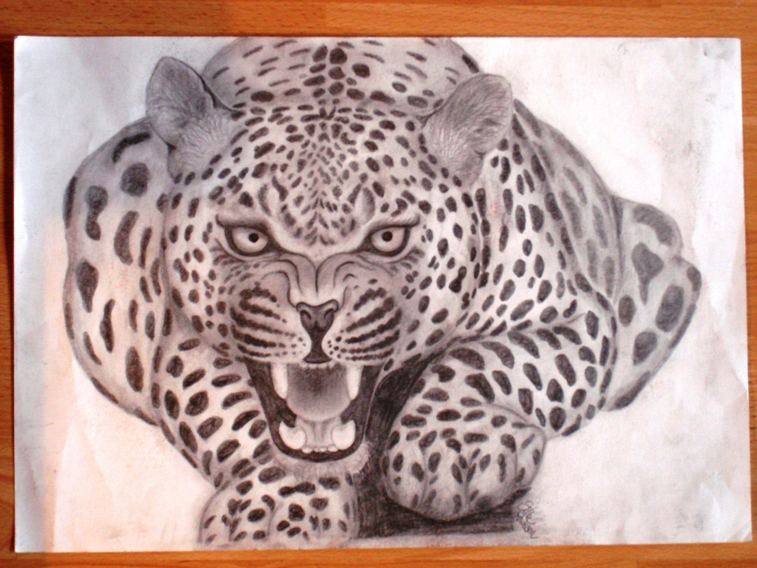 заявлению картинка ягуар рисунок достаточно крупные