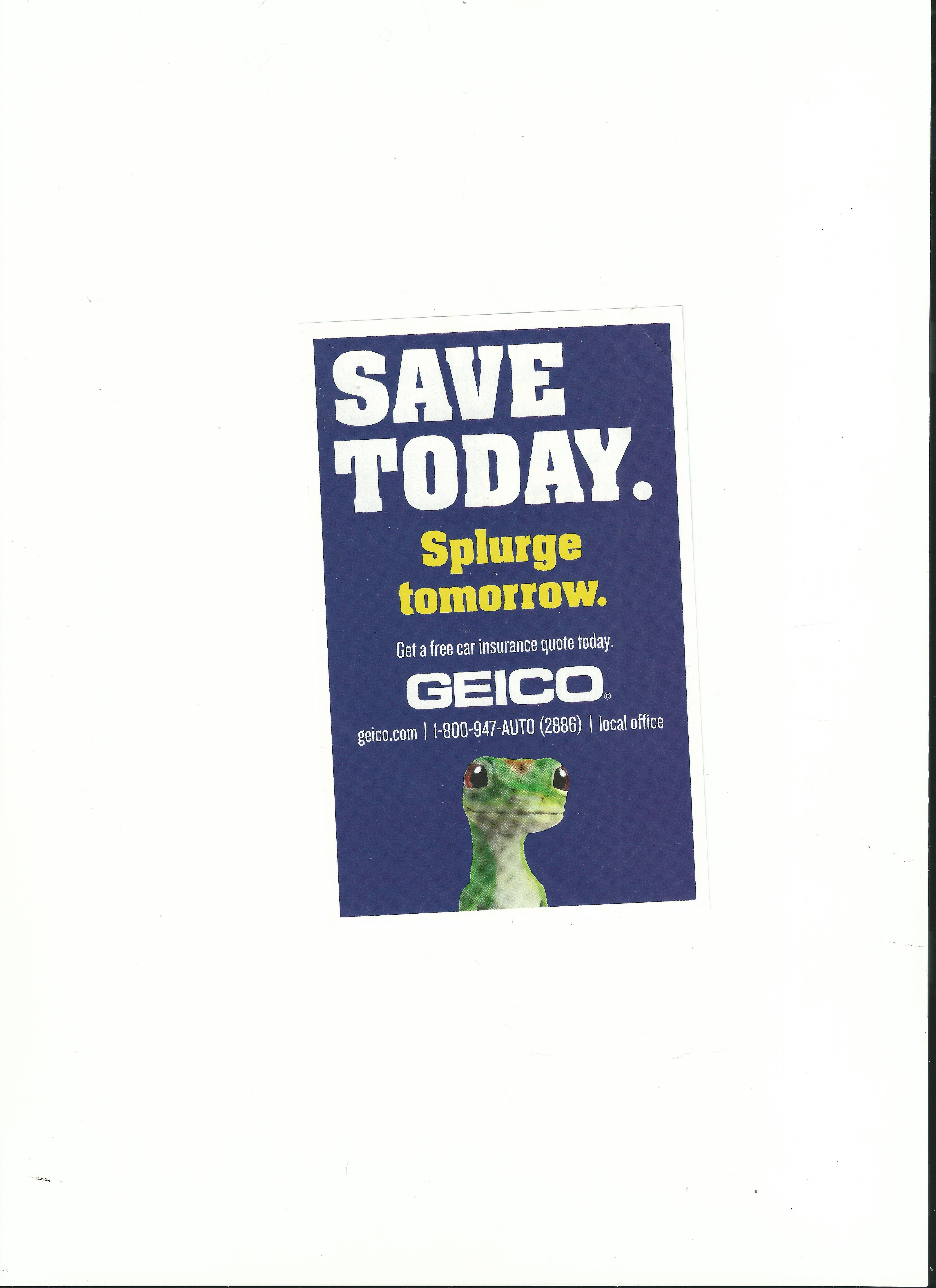 Typography Of A Geico Brochure