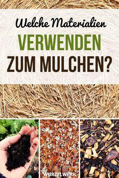 Photo of Los 7 errores más grandes al hacer mantillo en lechos vegetales – sistema de raíces