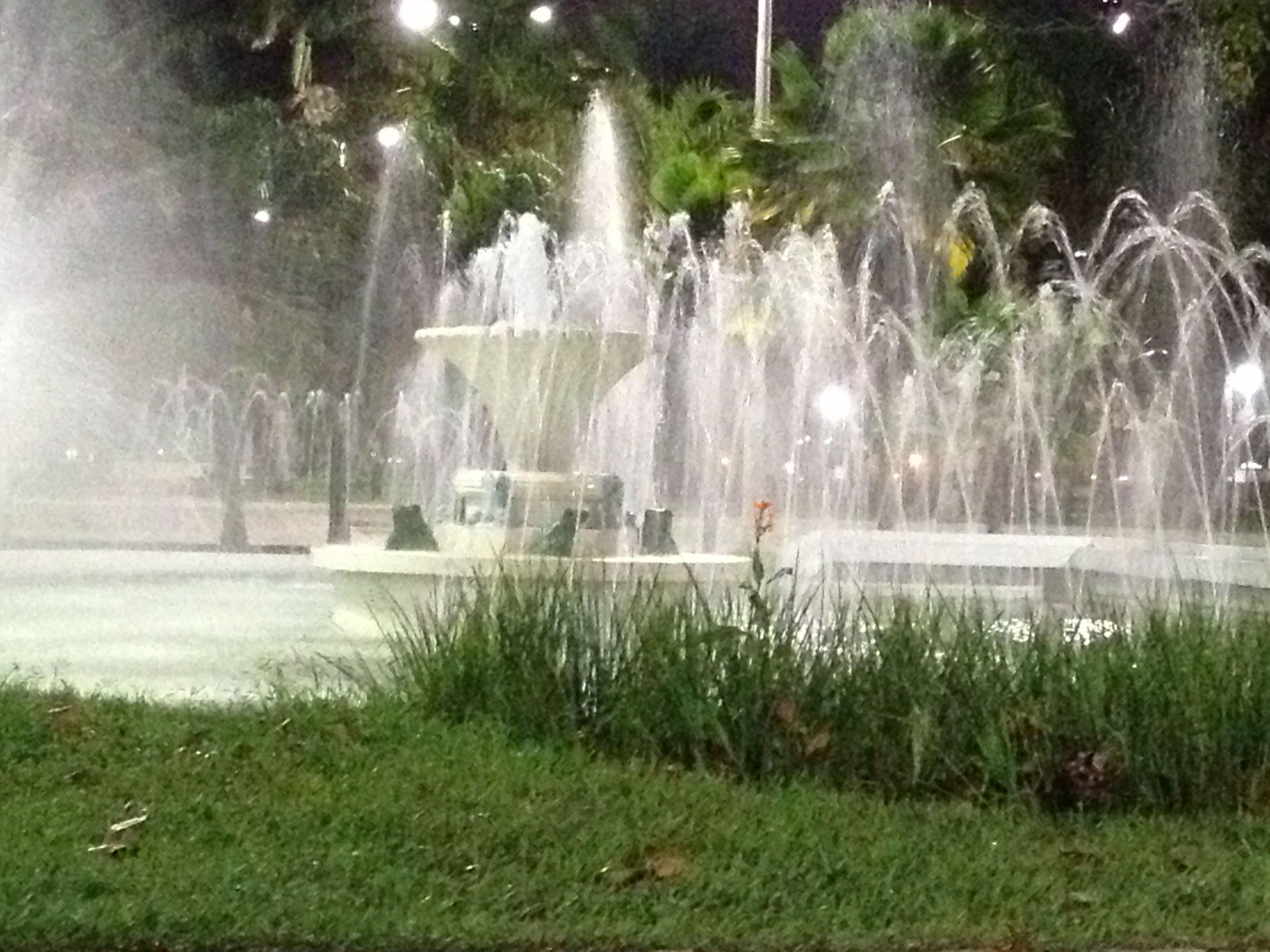 Praça do sapo