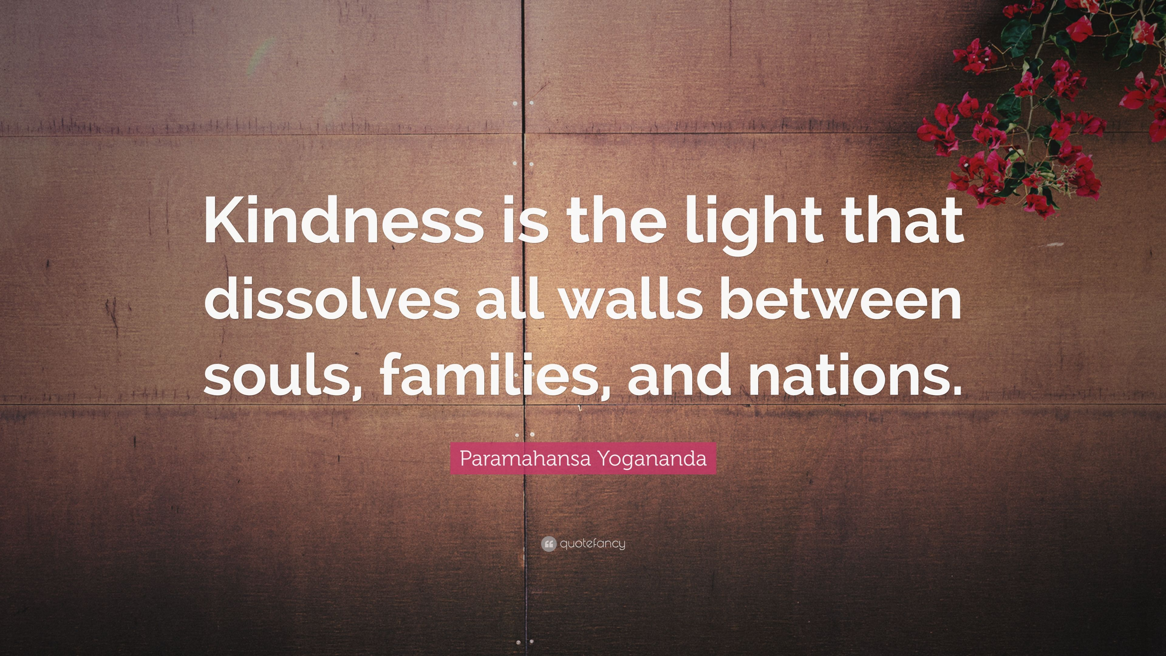 Quotes About Kindness Kindness Is The Light That Dissolves All Walls Between Souls