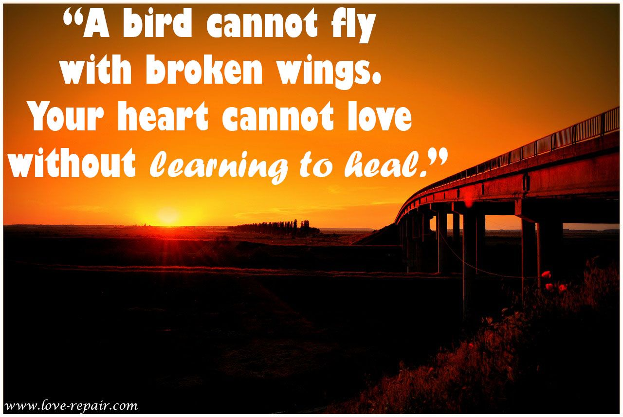 Healing Love Quotes Amazing A Bird Cannot Fly With Broken Wingsyour Heart Cannot Love