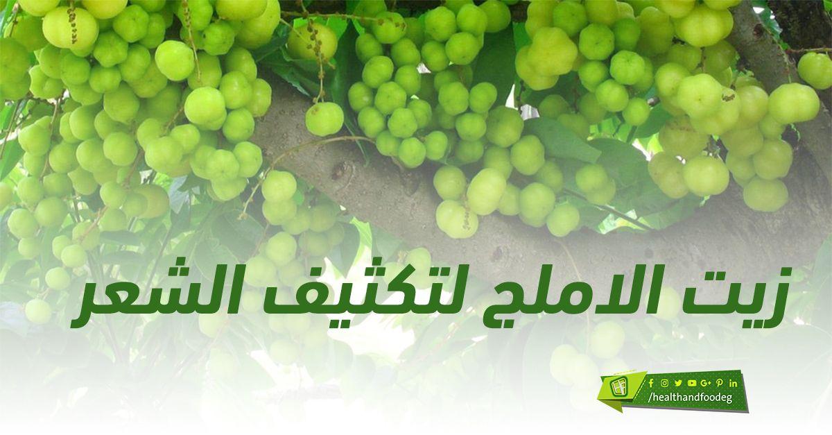زيت الاملج لتكثيف الشعر Grapes Fruit Food