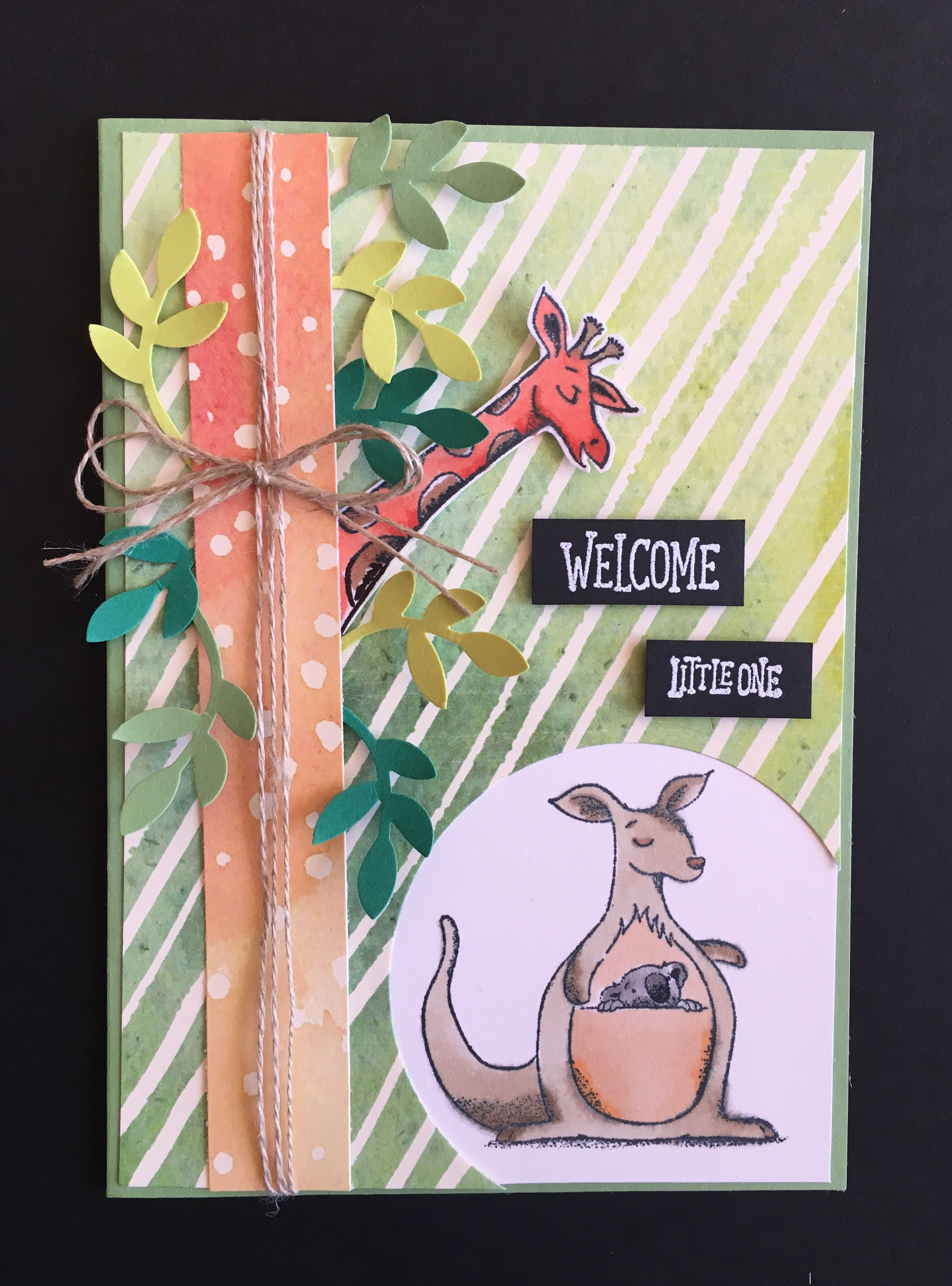 Animal outing stampin up by lissa carter baby cards
