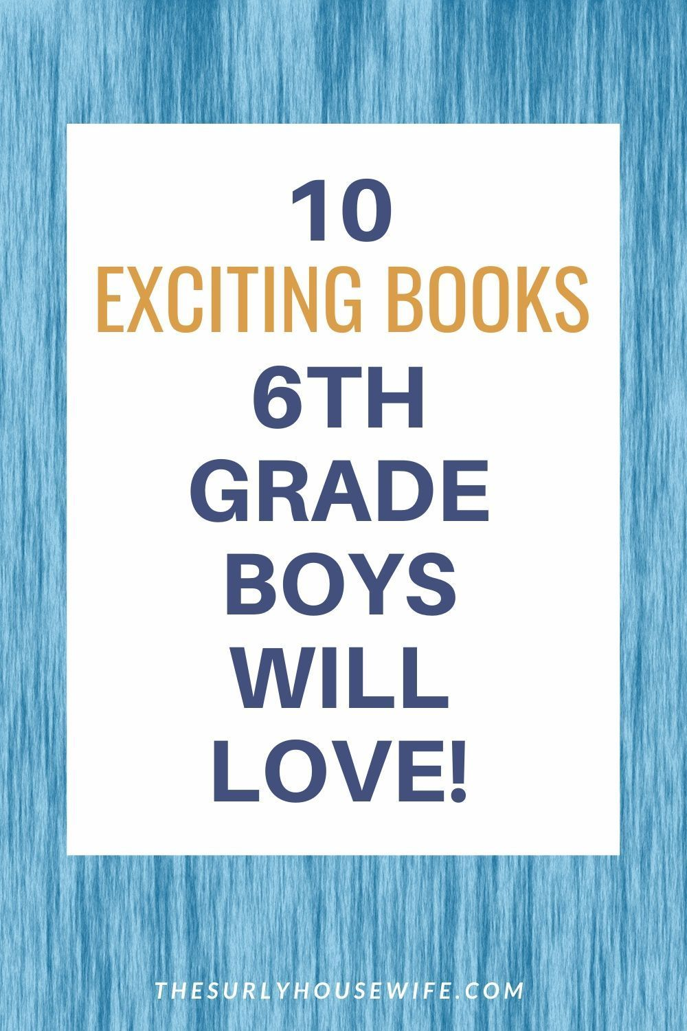 10 books perfect for 6th grade boys and up chapter