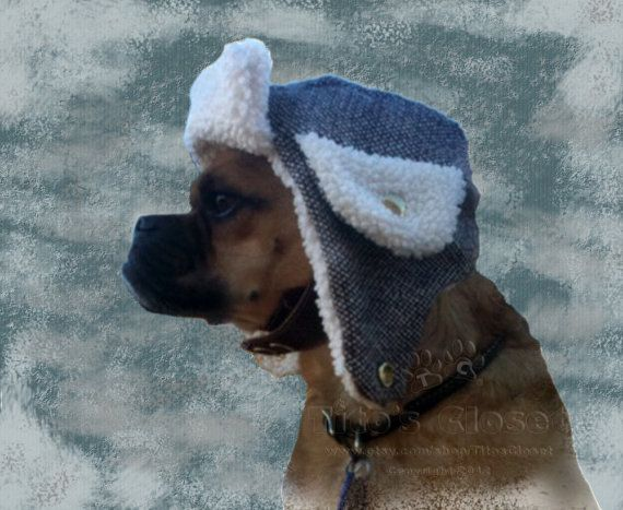 Items Similar To The Trapper Hat Cold Weather Hat For Dogs Featuring Rb Purple Tweed Fabric On Etsy Cold Weather Hats Dog Hat Trapper Hats