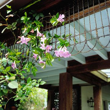 Old wire garden fence moves up in life. By fastening it to the porch soffit, the fence serves both as a trellis for climbers and as architectural interest.