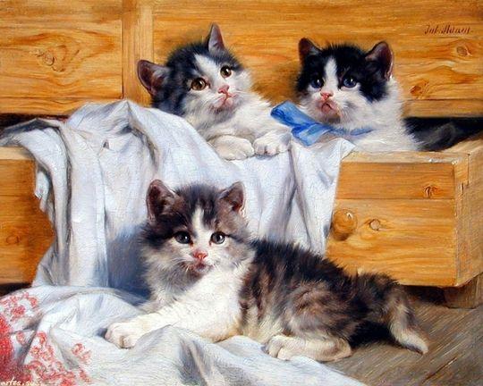 Julius Adams Katzen Malereien Katzen Schonen Katzen