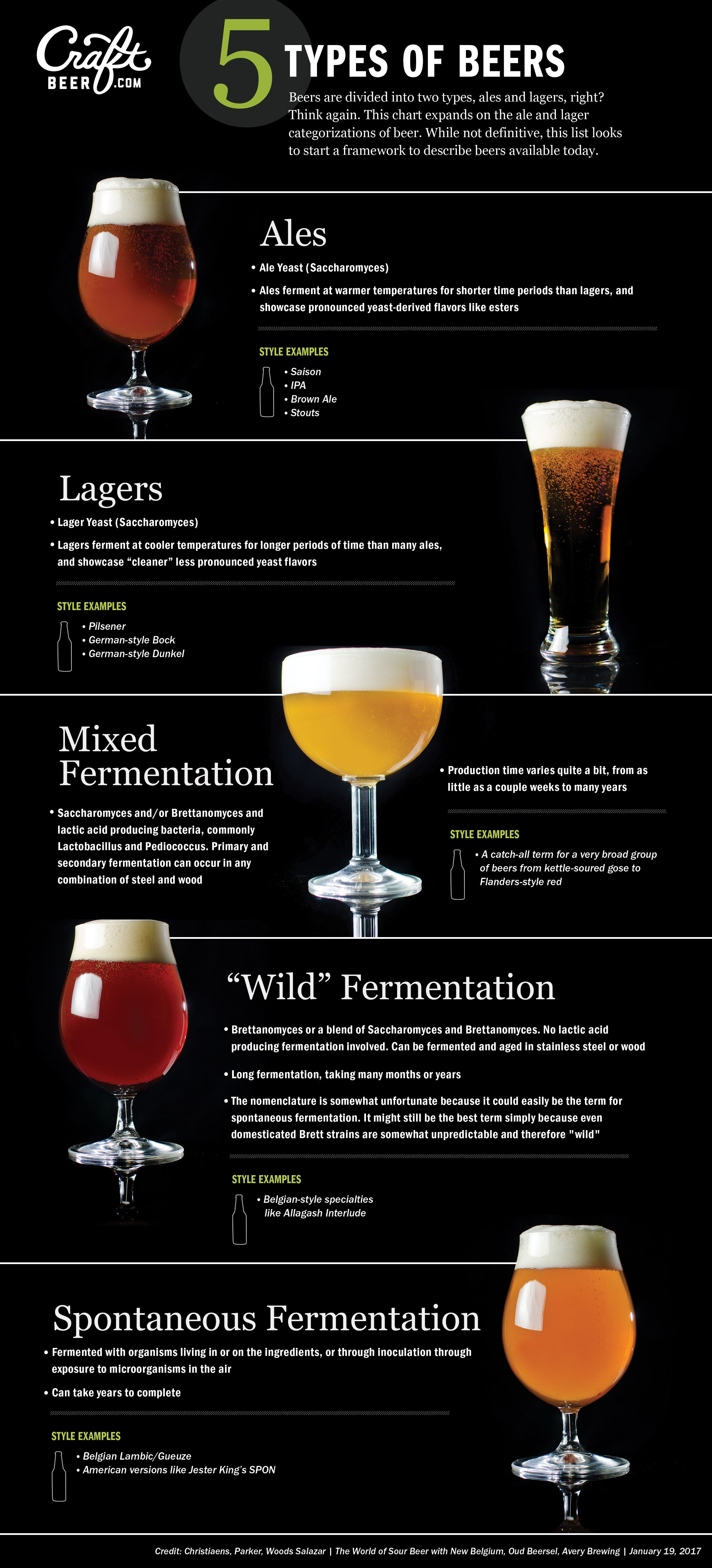 The Sour Beer Pickle in American Craft Brewing: Defining a