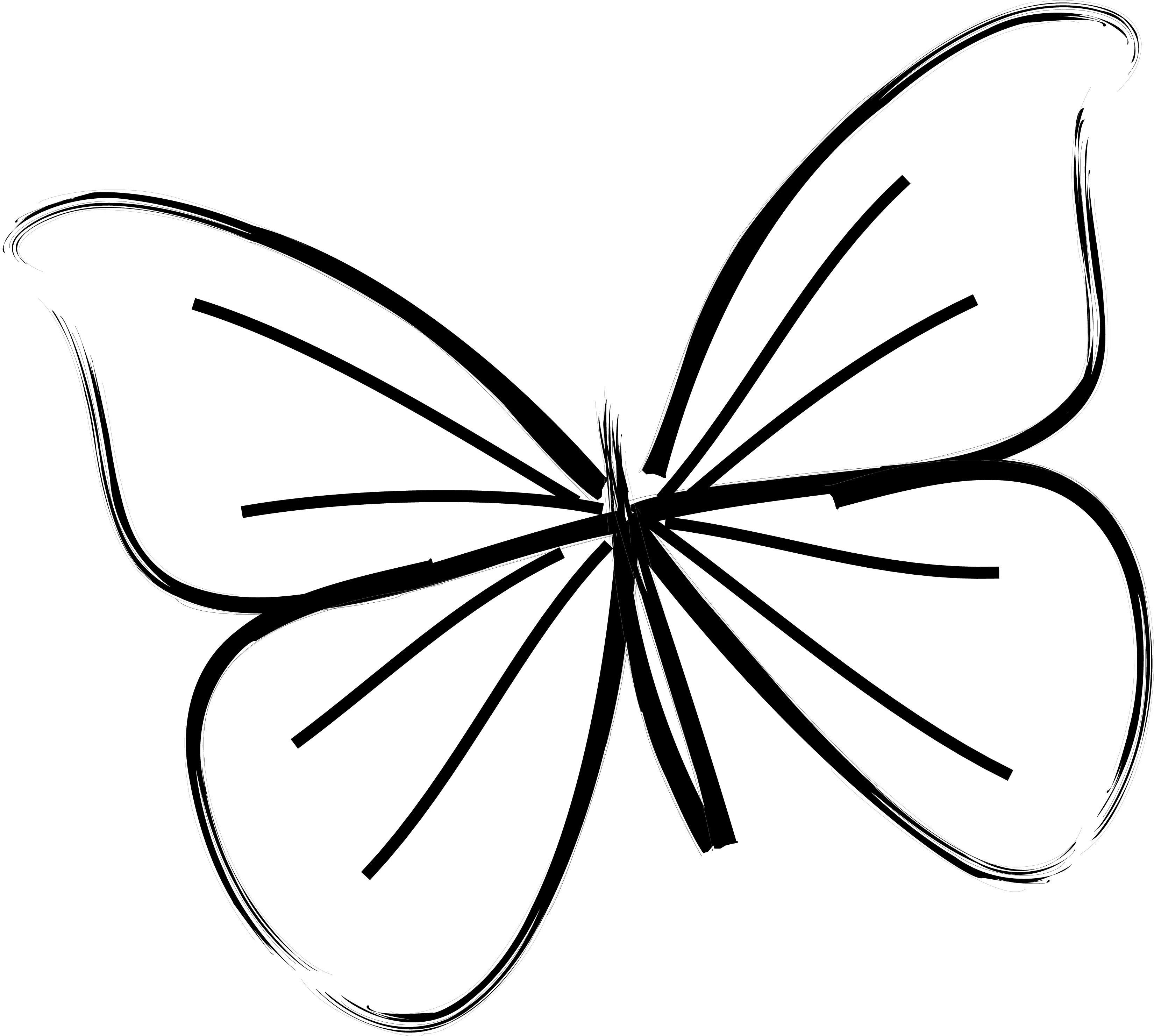 Images Simple Butterfly Drawings Kids