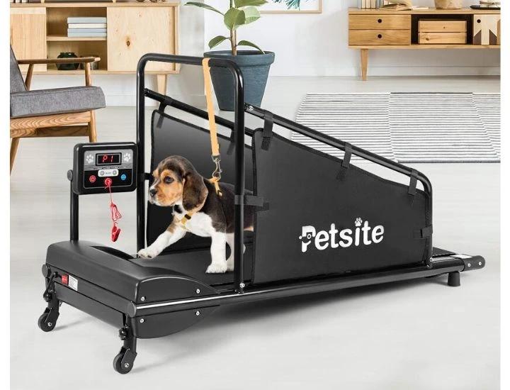 Daily Deal Dog Treadmills Petsite Indoor Pet Treadmill – UntilGone.com