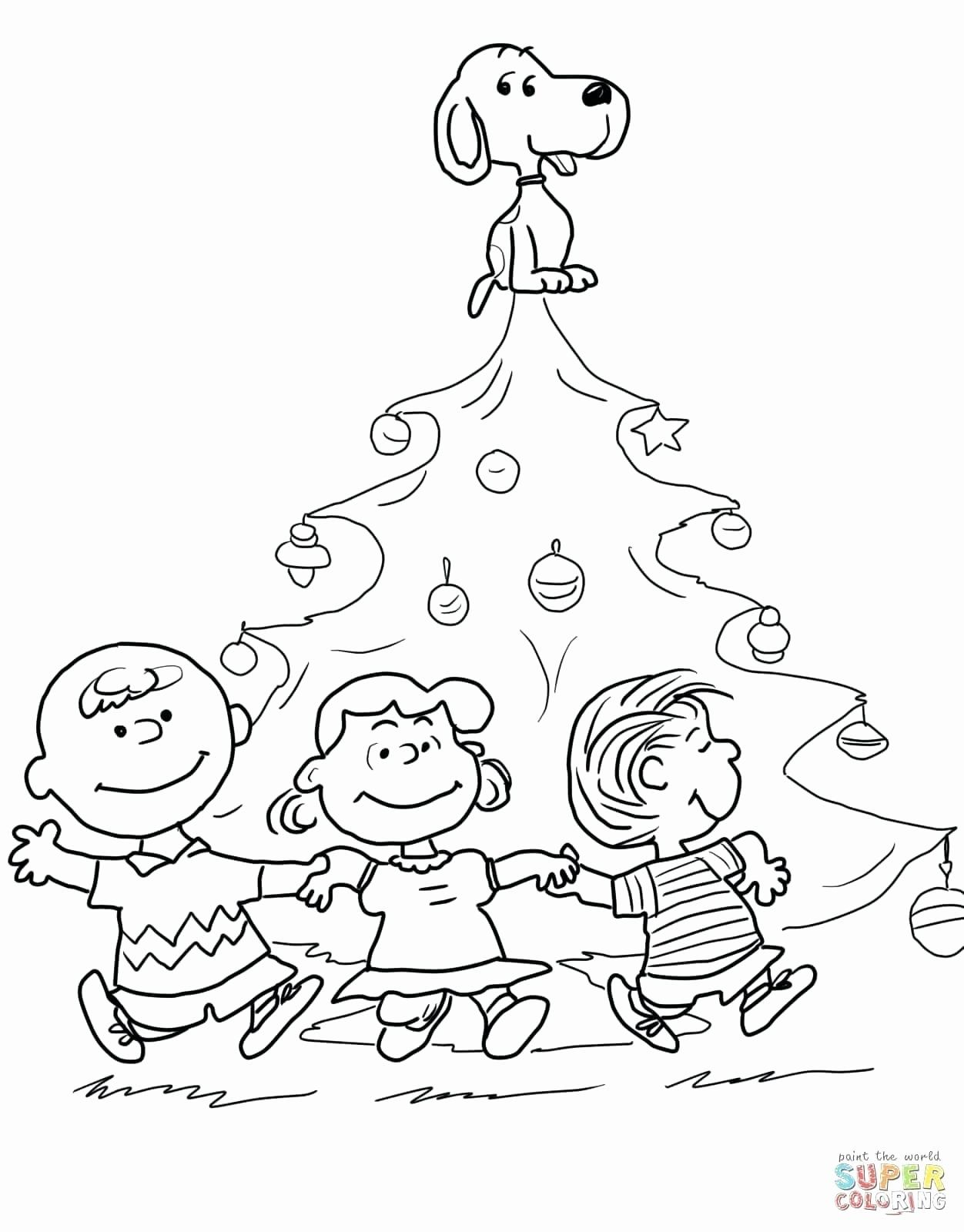 Coloring Book Evergreen Tree Coloring Pages Gallery Halloween Coloring Pages Christmas Coloring Sheets Christmas Tree Coloring Page