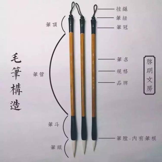 這篇文章把毛筆各部位名稱及衡量毛筆大小的指標說全了 Chinese