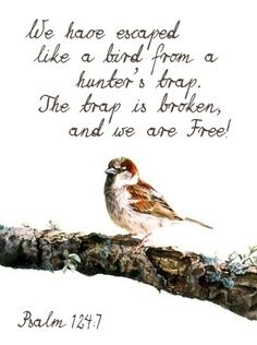 We Have Escaped Like A Bird From A Hunter S Trap The Trap Is Broken And We Are Free Bible Prayers Psalms Bible Scriptures
