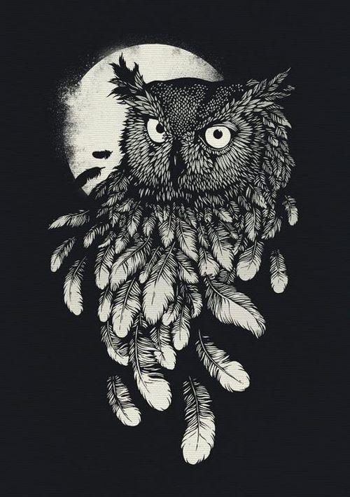 vanishing in the night  daniel teixeria  eule zeichnung