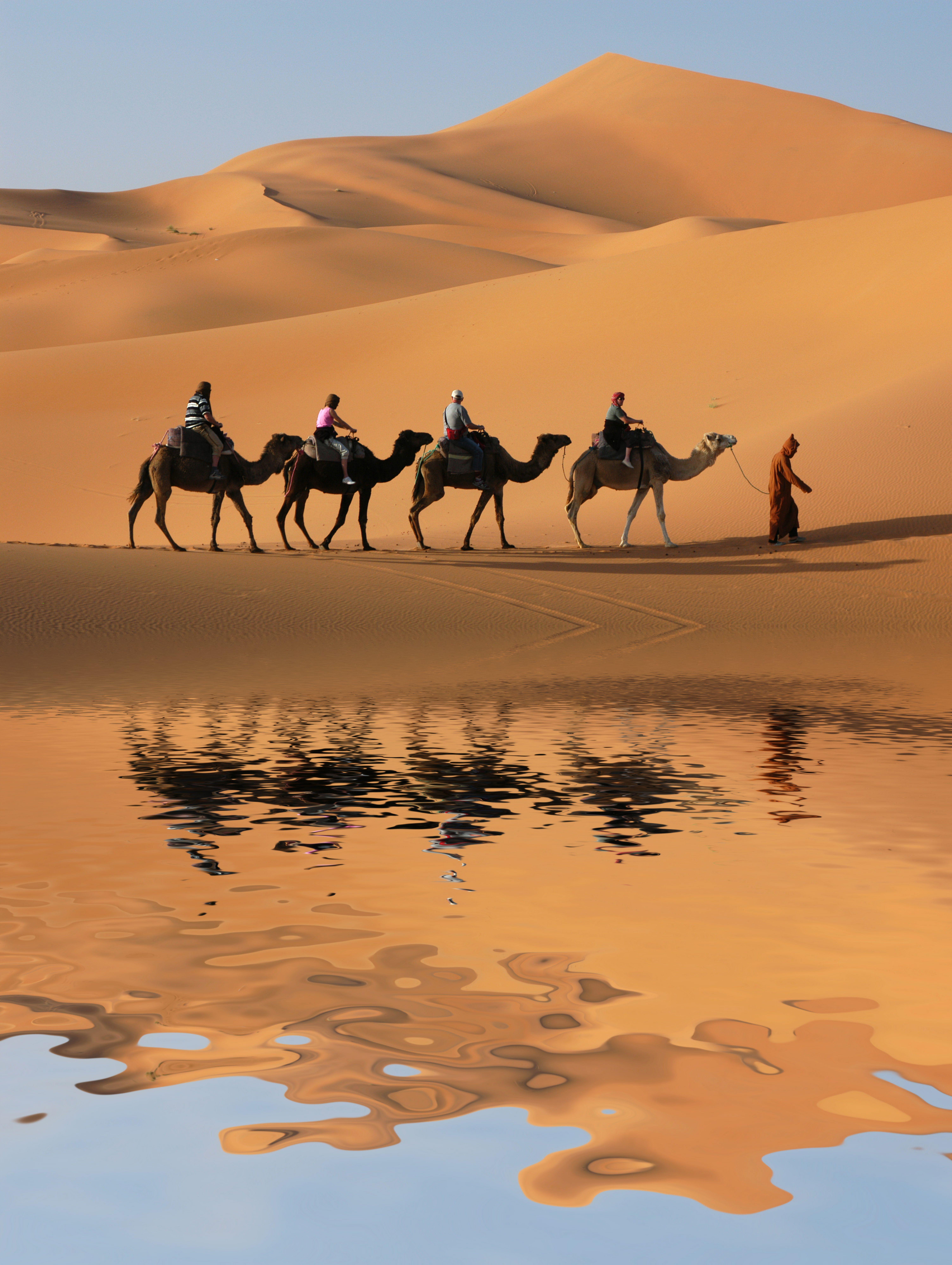 A sivatag szerelmesei online dating