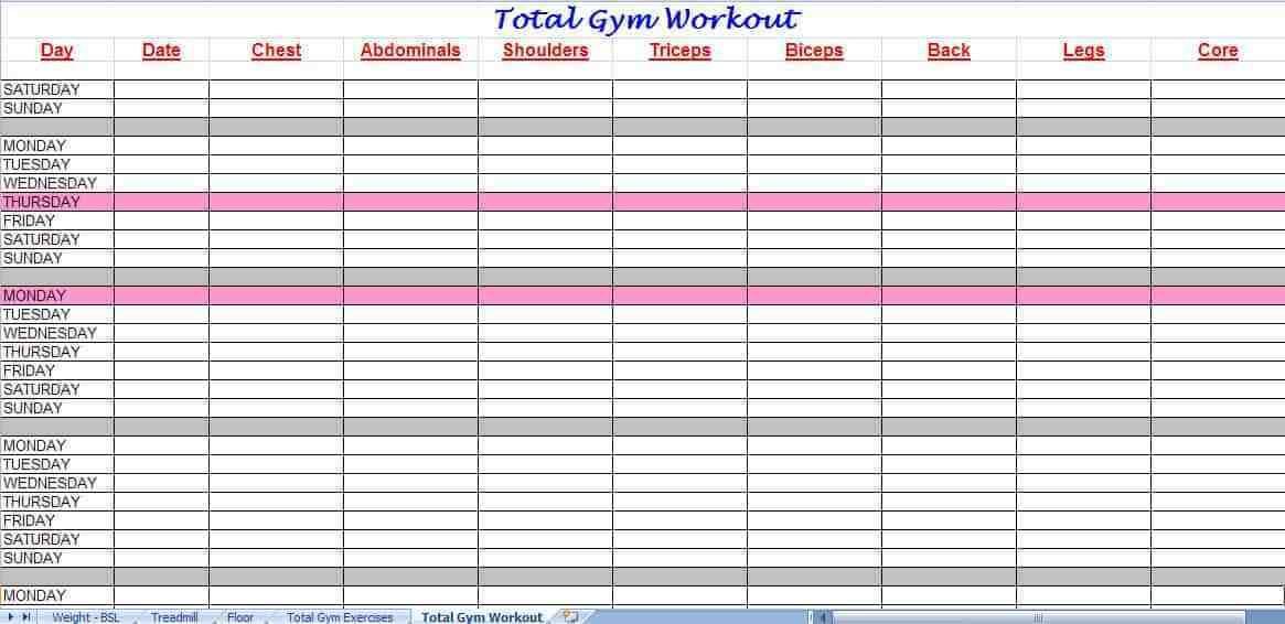 Triathlon Workout Log Template Workout Log Workout Schedule Exercise Log Template